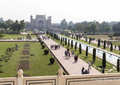 Dusan_STRAUS_India-3