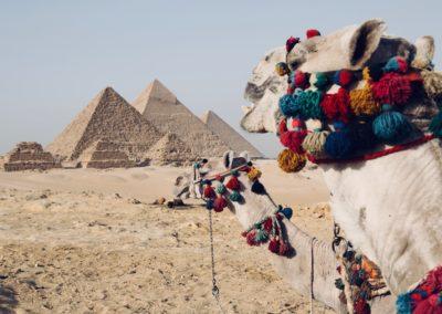 Tanec a kultura KÁHIRA, EGYPT lektor Tereza Sheyla Klementová 1.4. – 8.4.2019